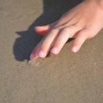 Qualle fühlen, Henne Strand, Dänemark