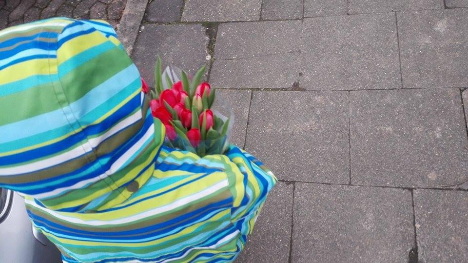 Tulpen zum Geburtstag